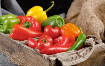 Aprueban estándar internacional para chile mexicano